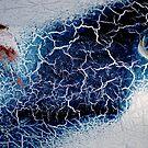 Blue Storm by Robert Goulet