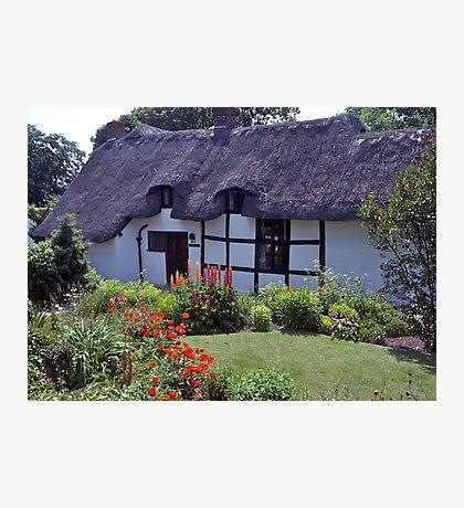 Cottage garden, Stratford-upon-Avon, UK Photographic Print