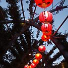 Red Lanterns at South Bank by amgmcpherson