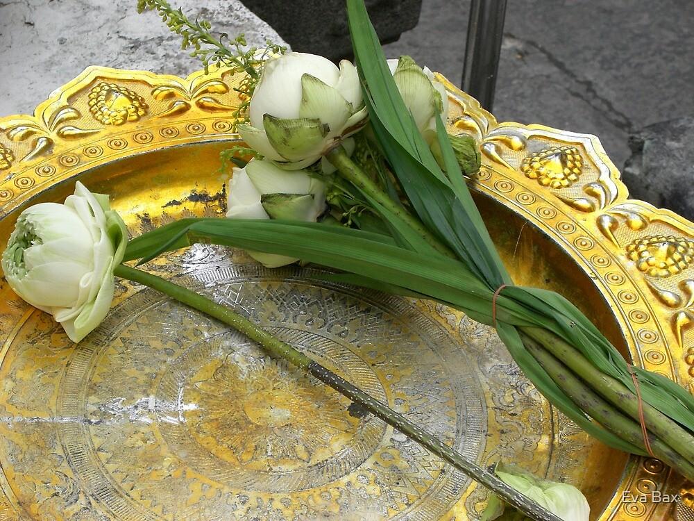 Bowl for Buddha by Eva Bax
