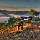 Contemplation Point - Merlin's Lookout, Hill End NSW Australia - The HDR Experience by Philip Johnson