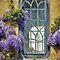 Windows or Doors with Flowers.