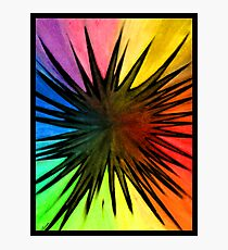"""Rainbow Splat"" Photographic Print"
