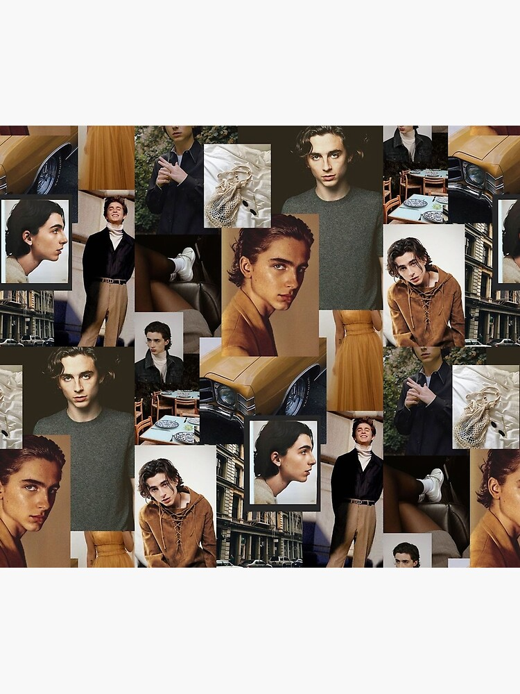 Timothee Chalamet: Collage by AnnoyingJuice