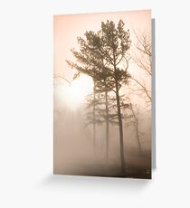 In the heart of the pines Greeting Card
