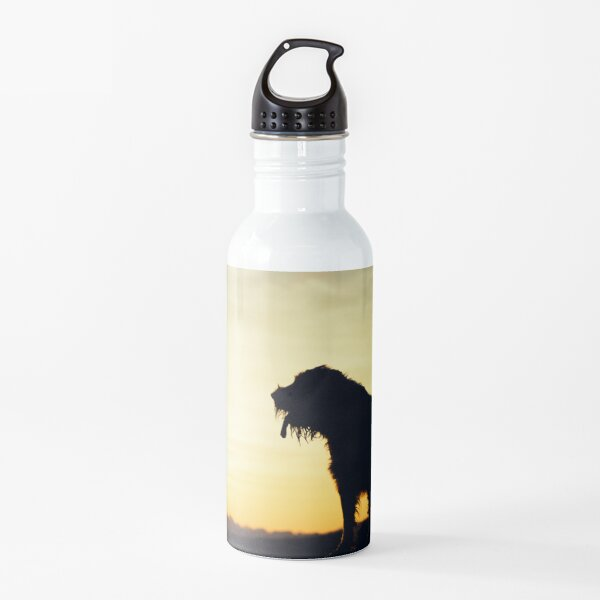 Sunset lookout Spinone  Water Bottle