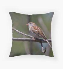 Poised Field Sparrow Throw Pillow