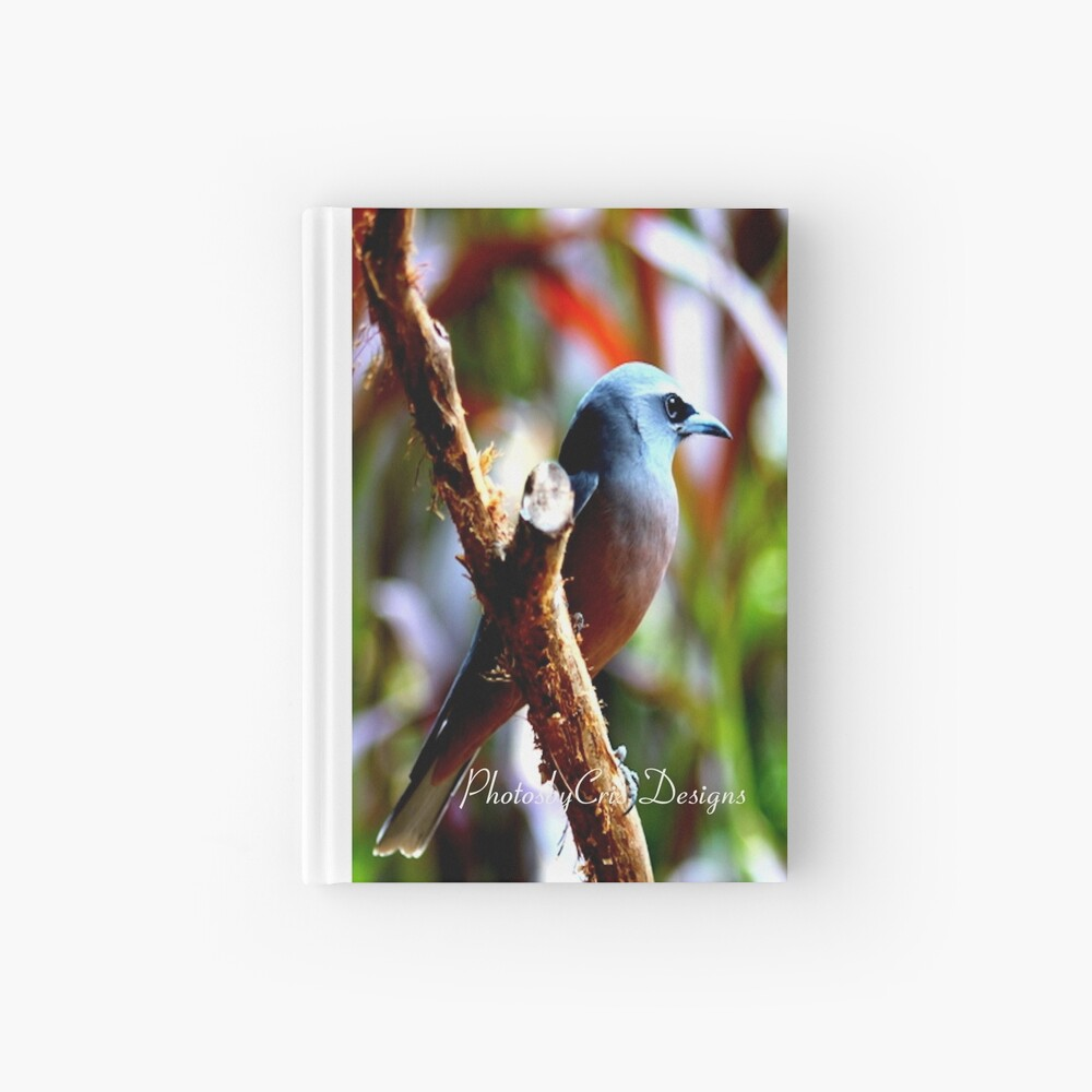 Bird of Colours Hardcover Journal