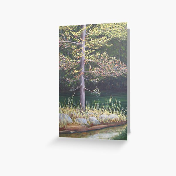 Pine on the Point Greeting Card