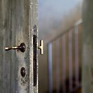 open door  by keki