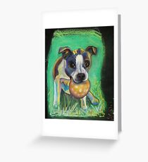Boston Terrier with Ball Greeting Card