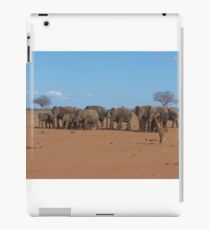 Kenyan Elephants iPad Case/Skin