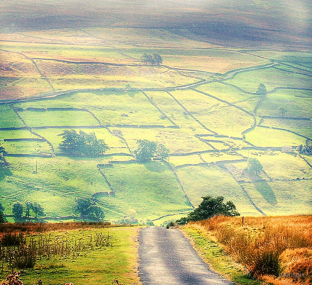 The Light On The Dale by patrixpix