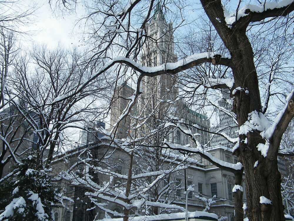 Woolworth Building, New York, Snow View by lenspiro