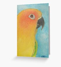 Sun Conure - ACEO Greeting Card