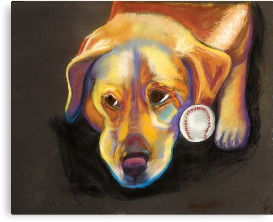 Golden Lab with Baseball by Ann Marie Hoff