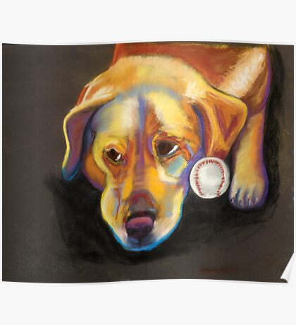 Golden Lab with Baseball Poster