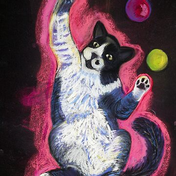 Juggling Cat by Annimalloverf