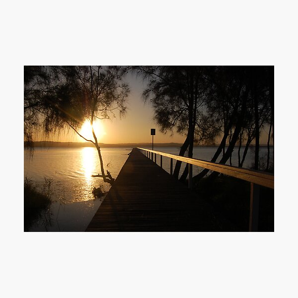 A Tree and a Signpost - Long Jetty Photographic Print