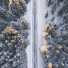 Winter Road and Snowy Trees by M-a-k-s-y-m