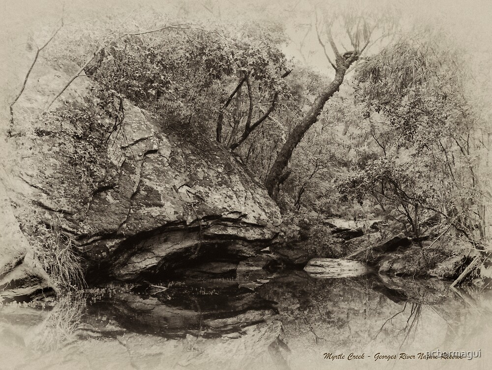 Fish Rock Myrtle Creek - Sepia by pcbermagui