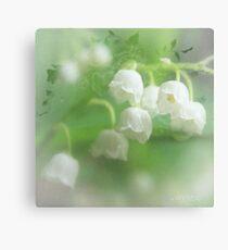 Fragrant beauty Canvas Print