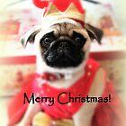 Merry Christmas ~ Pug Series by Evita