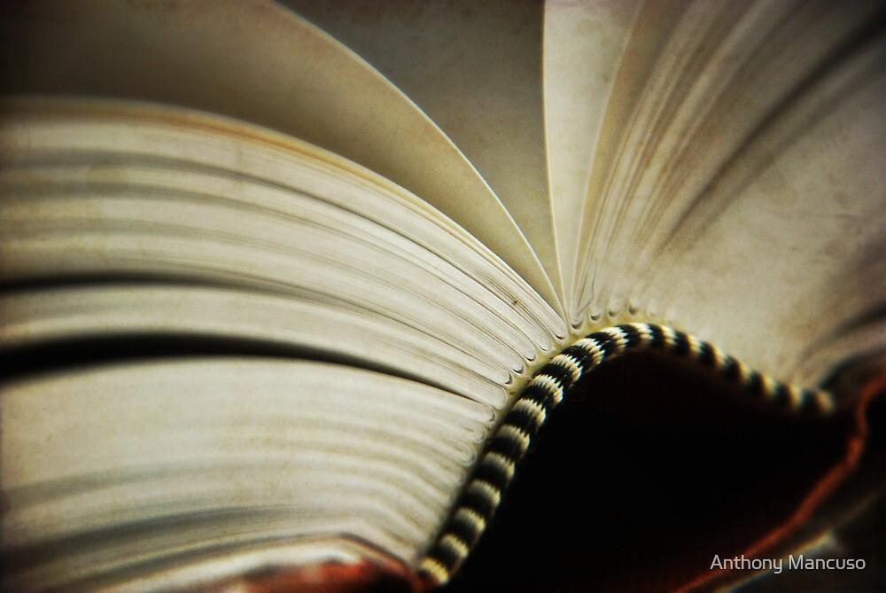 fiction by Anthony Mancuso