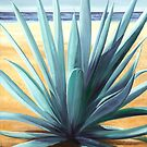 Agave en la Playa - oil painting of cactus on a Mexican beach by James  Knowles