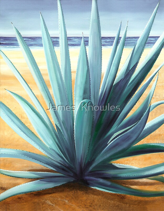 Quot Agave En La Playa Oil Painting Of Cactus On A Mexican