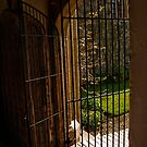 Entrance to the Great Hall by moor2sea