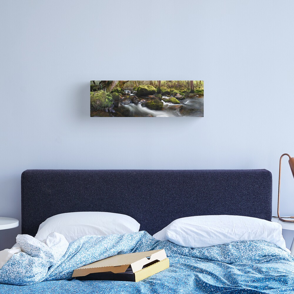 Pine Valley Stream, Lake St Clair National Park, Tasmania Canvas Print
