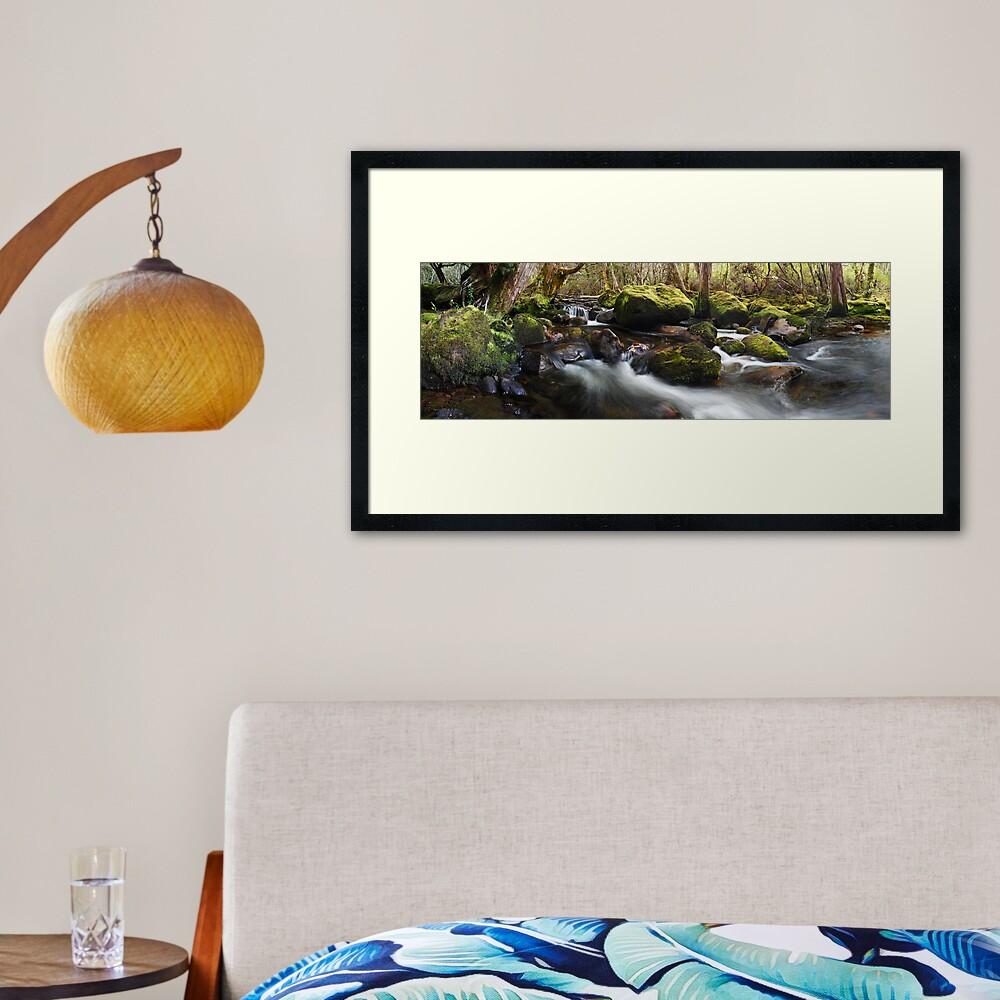 Pine Valley Stream, Lake St Clair National Park, Tasmania Framed Art Print