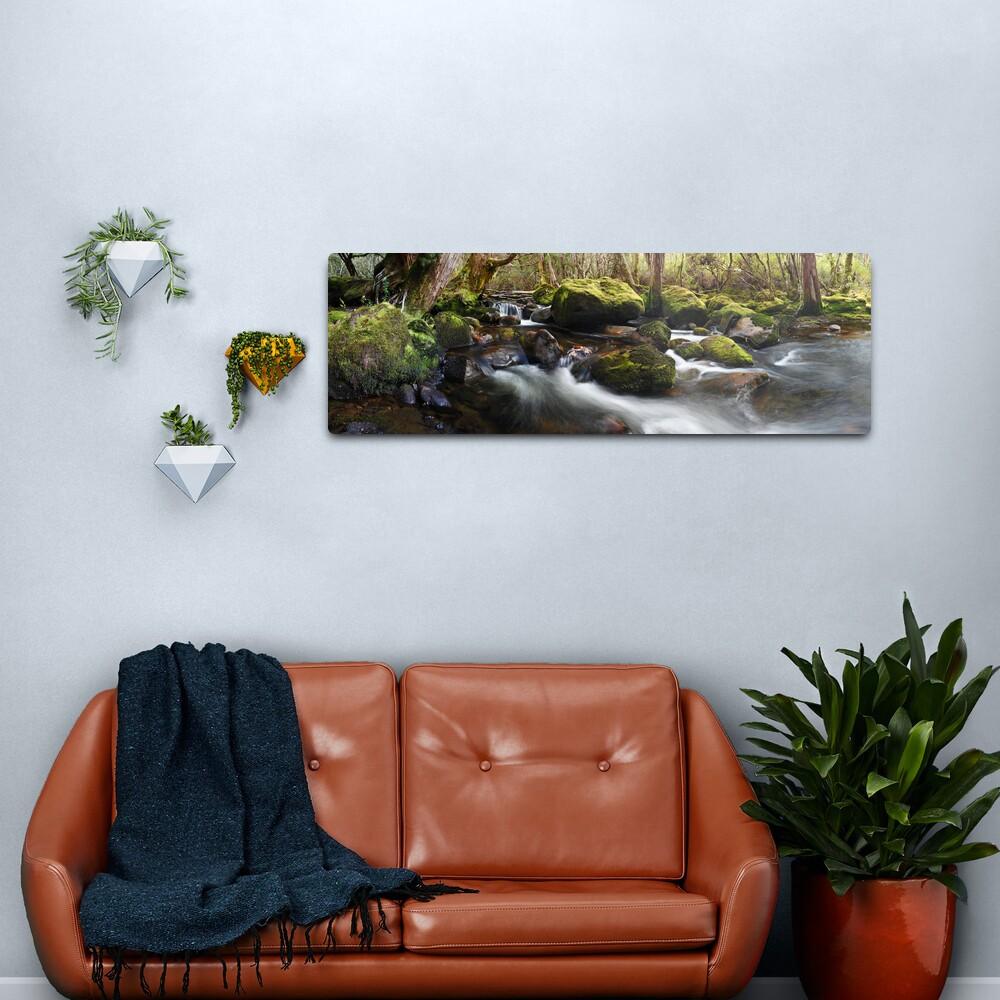 Pine Valley Stream, Lake St Clair National Park, Tasmania Metal Print