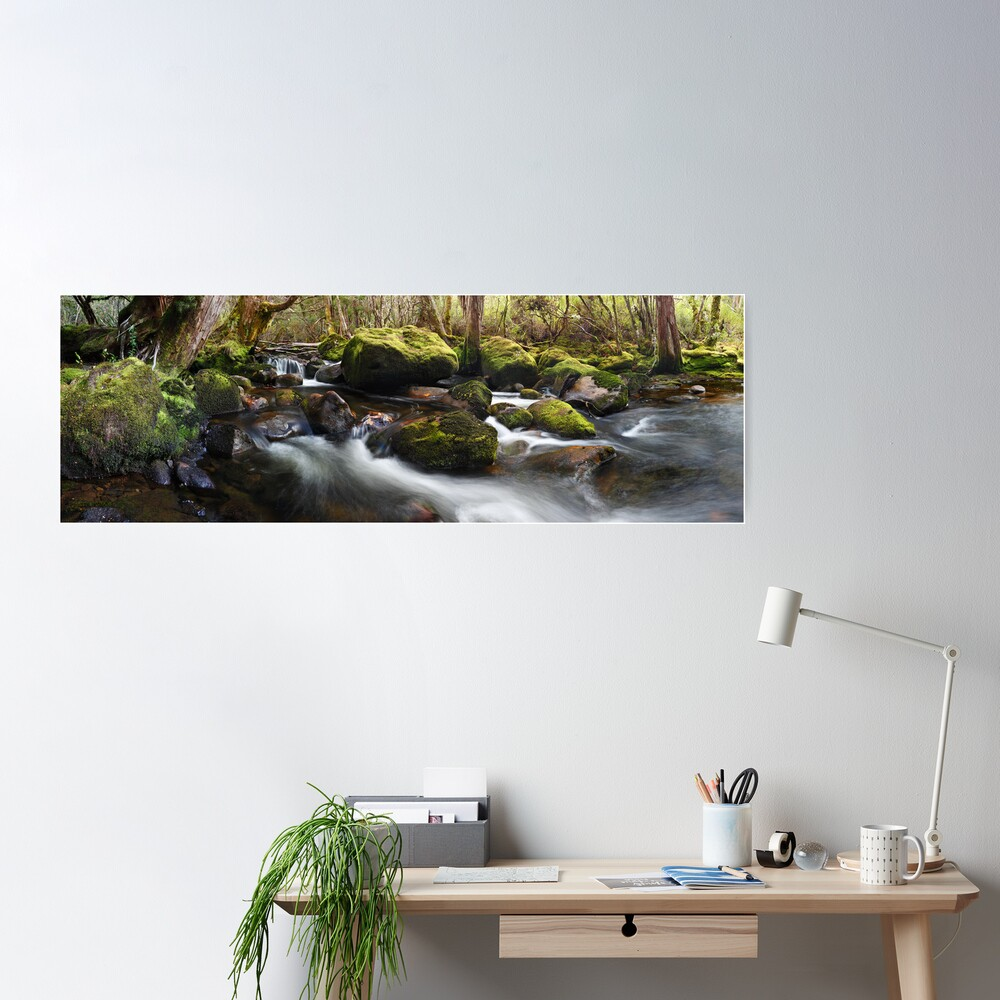 Pine Valley Stream, Lake St Clair National Park, Tasmania Poster