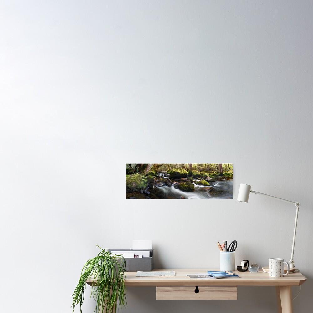 Pine Valley Stream, Lake St Clair National Park, Tasmania Poster