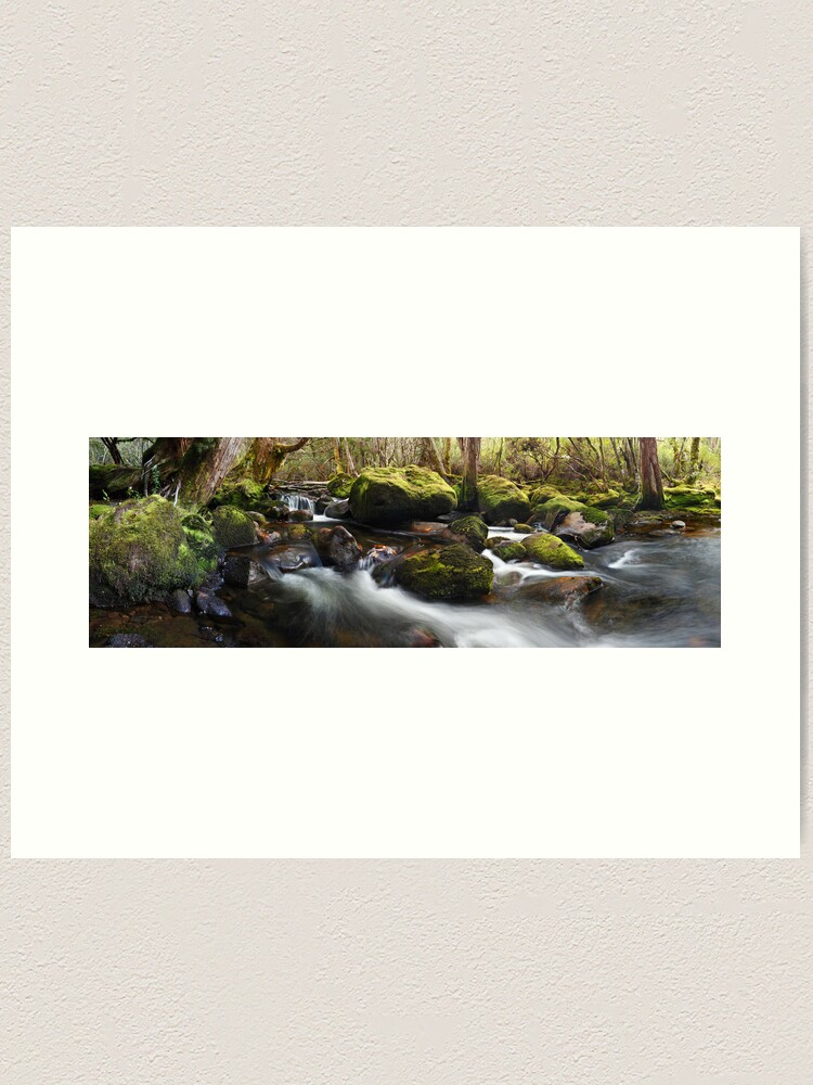 Alternate view of Pine Valley Stream, Lake St Clair National Park, Tasmania Art Print