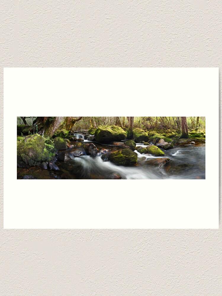 Alternate view of Pine Valley Stream, Lake St Clair National Park, Tasmania Art Print