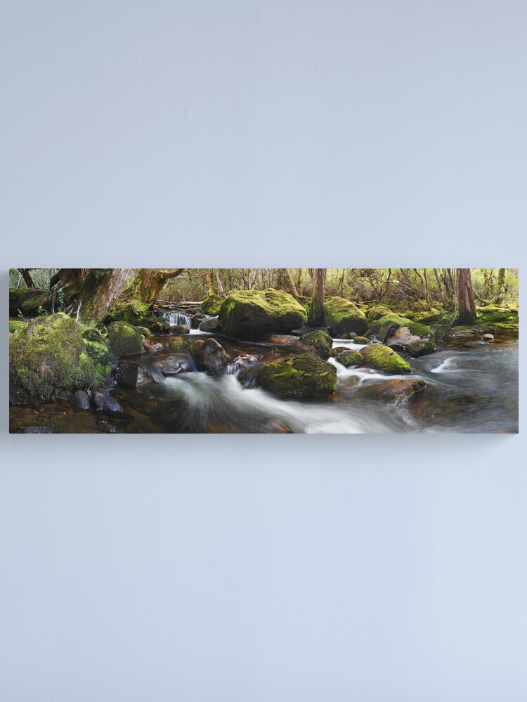 Alternate view of Pine Valley Stream, Lake St Clair National Park, Tasmania Canvas Print