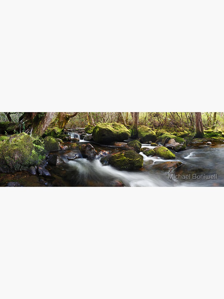 Pine Valley Stream, Lake St Clair National Park, Tasmania by Chockstone