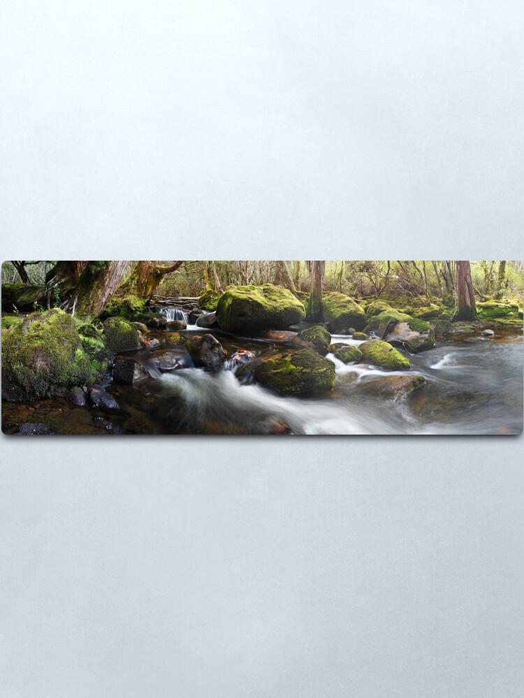 Alternate view of Pine Valley Stream, Lake St Clair National Park, Tasmania Metal Print