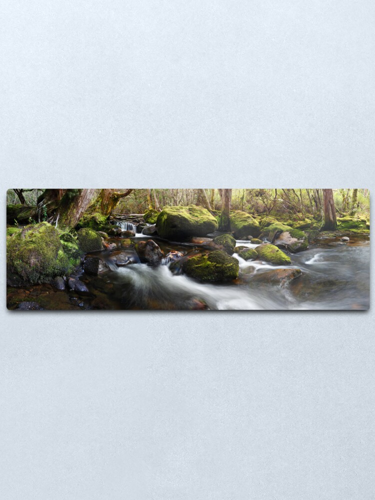 Alternate view of Pine Valley Stream, Lake St Clair National Park, Tasmania Metal Print