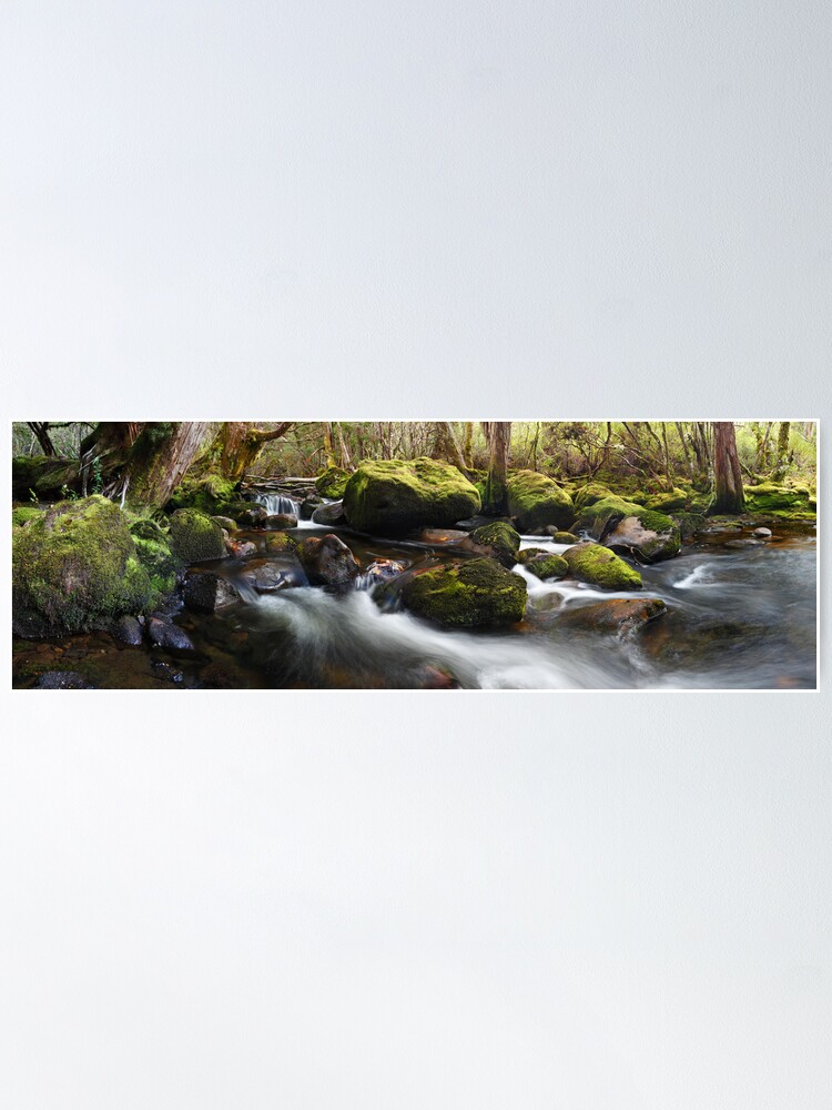 Alternate view of Pine Valley Stream, Lake St Clair National Park, Tasmania Poster