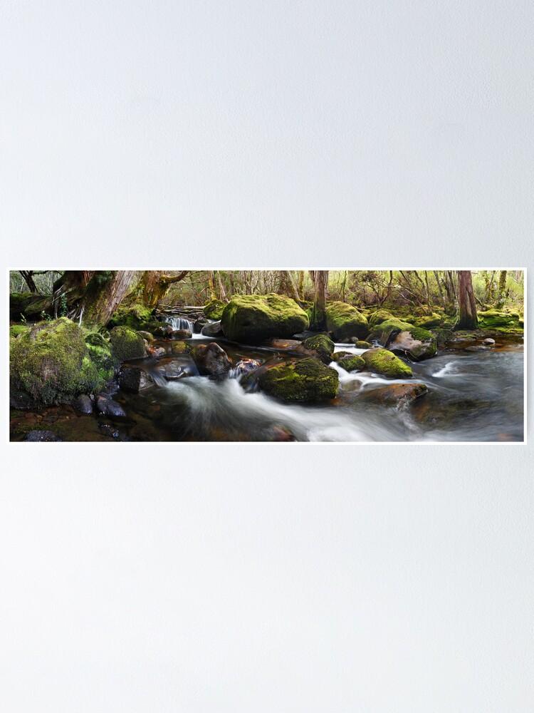 Alternate view of Pine Valley Stream, Lake St Clair National Park, Tasmania Poster