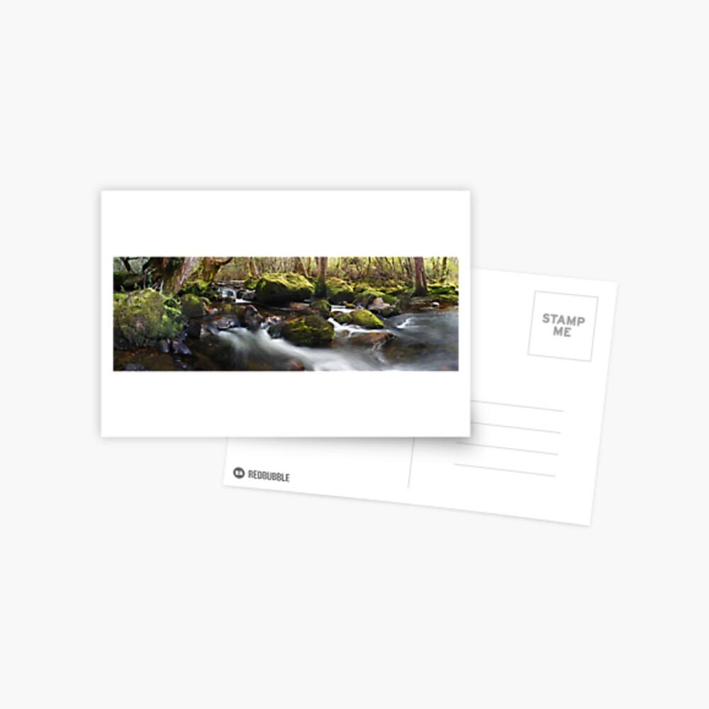 Pine Valley Stream, Lake St Clair National Park, Tasmania Postcard