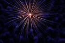 fireworks 19/9/15 by david gilliver