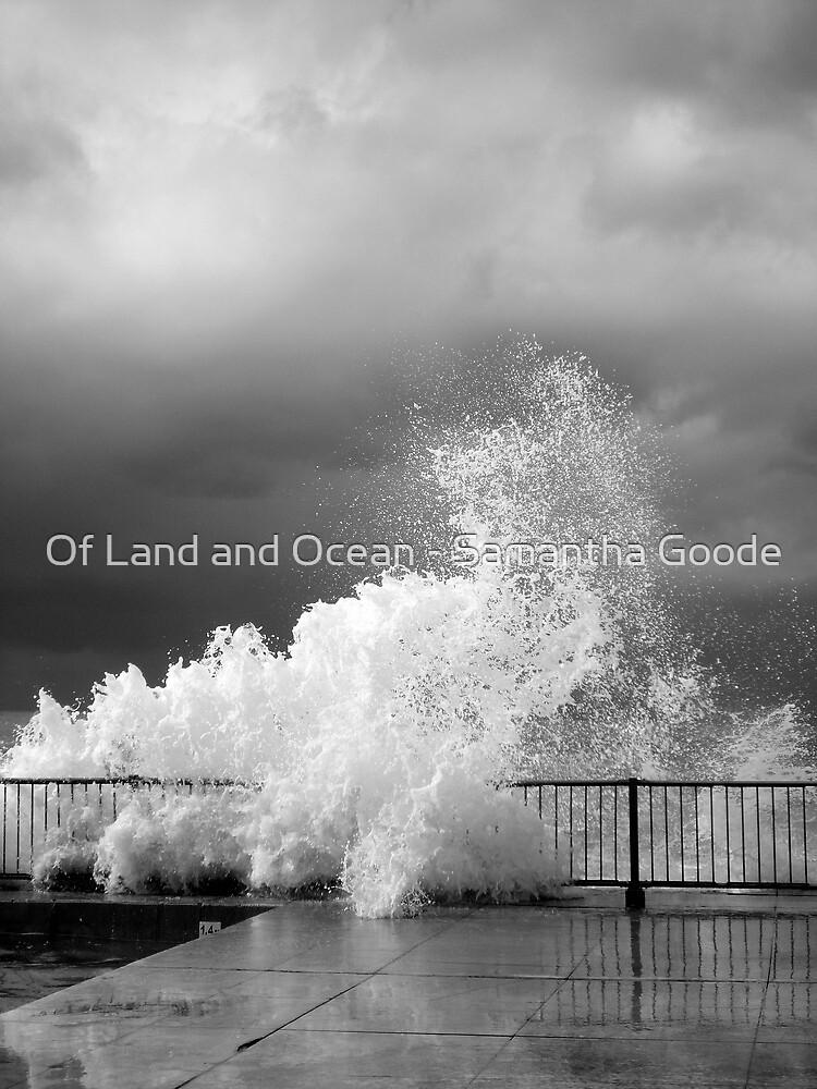 Water  by Of Land & Ocean - Samantha Goode