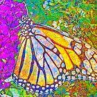 Butterfly on Flower by JanDeA