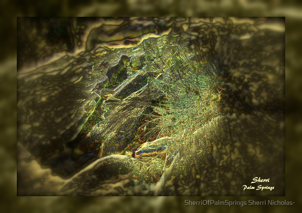 NATURAL CAVE ON TOP OF THE TRAM-PALM  SPRINGS, CA by SherriOfPalmSprings Sherri Nicholas-