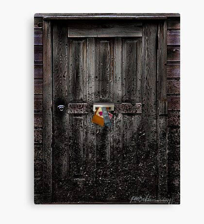 """Nobody Home"" Canvas Print"